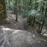 Wurzelige Steilabfahrt als Einfahrt in den Abschnitt