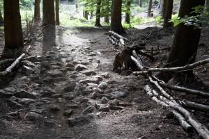Grobes Steinfeld